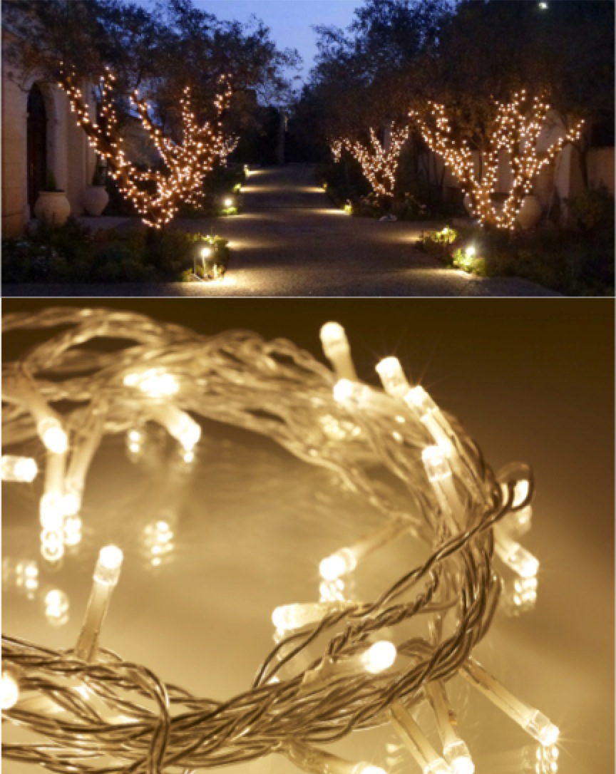 Garden Lights - Fairy/Pea Lights